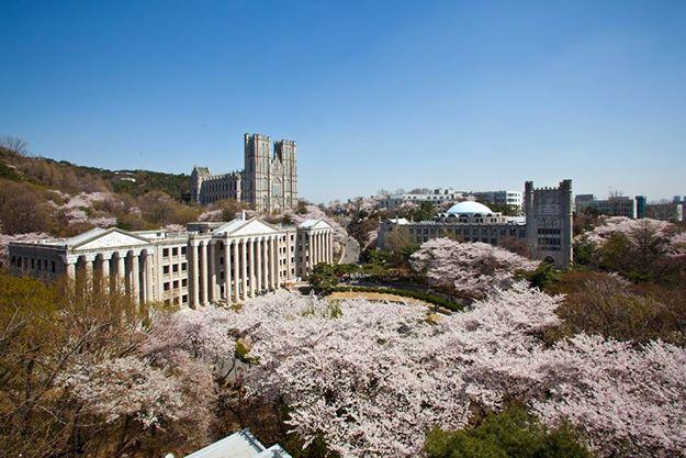 trường đại học kyung hee